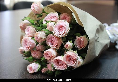 اضغط على الصورة لعرض أكبر  الاســـم:Very-Beautiful-Flowers-bouquets11.jpg المشاهدات:2 الحجـــم:80.7 كيلوبايت الرقم:512564