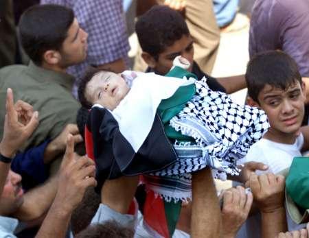 غزه3.jpg